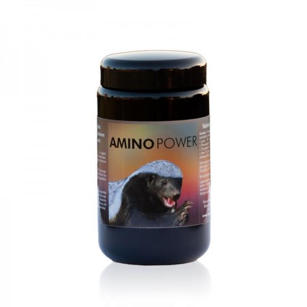 Amino Power 180 vegane Kapseln von Robert Franz