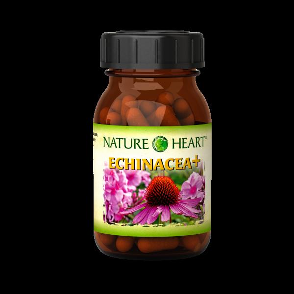 Nature Heart Echinacea+ - 1 Glas mit 60 Kapseln