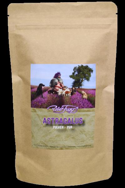 Astragalus Pulver – Pur – 100 g