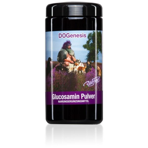 Glucosamin Pulver 500 g von Robert Franz
